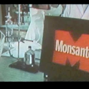 In Our Backyard: A Monsanto Introspective