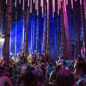 Electric Forest Installation Sponsorship 2014