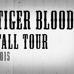 Turbo Suit /// Tiger Blood Tour